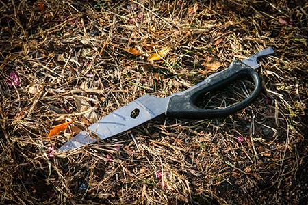 Salem Scissors